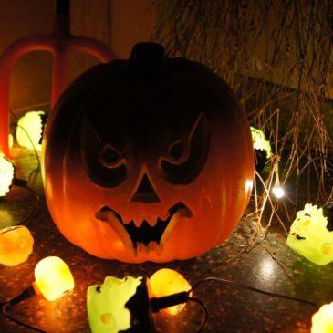Wir gruseln uns an Halloween.