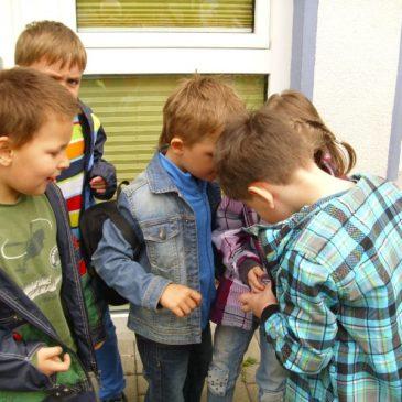 Erstklässler und Kita-Kinder auf Käfersuche